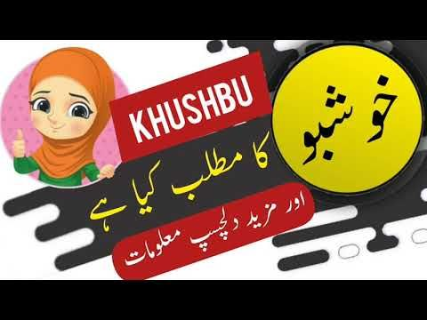 Pin On Muslim Girls Name In Urdu
