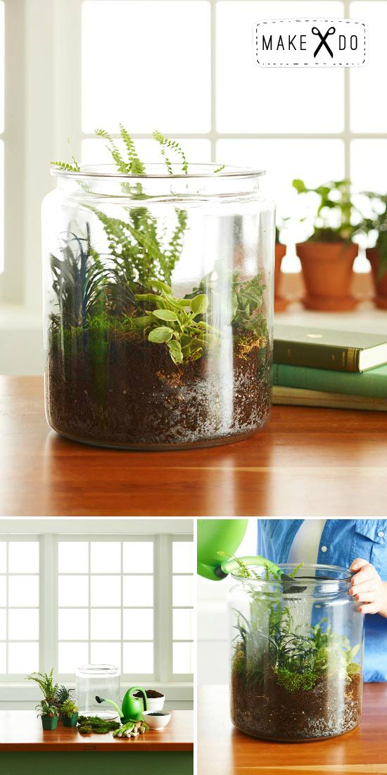 A Simple Terrarium Project from House & Hold: House Plants, Green Thumb, Diy Terrariums, Indoor Terrarium, Indoor Garden, Indoor Plants, Simple Terrarium,  Flowerpot