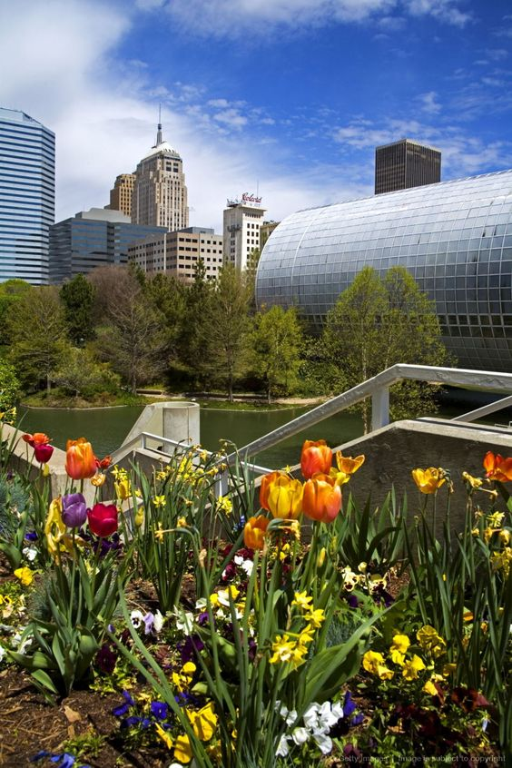 Myriad Botanical Gardens, Downtown Oklahoma City, Oklahoma. People ask me all the time what there is to do in Oklahoma and I say everything!
