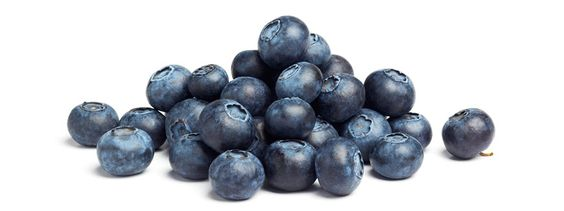 July is National Blueberry Month, check out our blog on the benefits of blueberries and how to grow your own today!