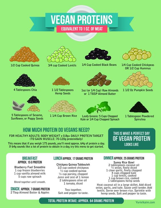 Best Vegan Protein Sources: The Definitive Guide to Plant Based Protein by yurielkaim #Infographic #Plant_Based_Protein
