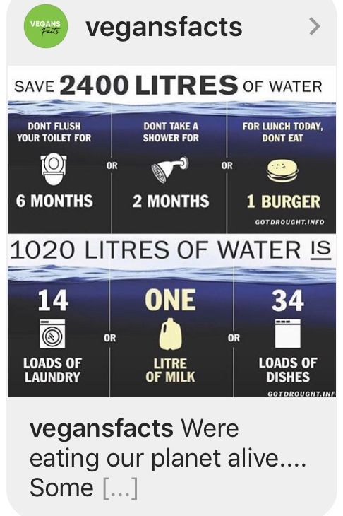 2 400 Liters Water Wasted For 1 Burger From Killed Animals