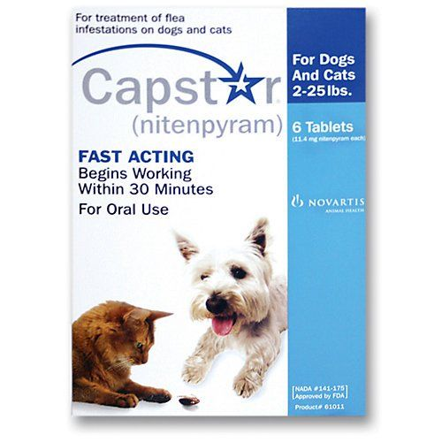 Capstar Dogs 6 Pack Thanks For Visiting Our Image This Is Our Affiliate Link Dogfleaandtickcontrol With Images Dogs Dog Cat Dogs Online