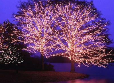 Fantasy In Lights Callaway Gardens Celebrate