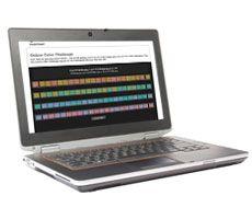 Desafío del color en línea