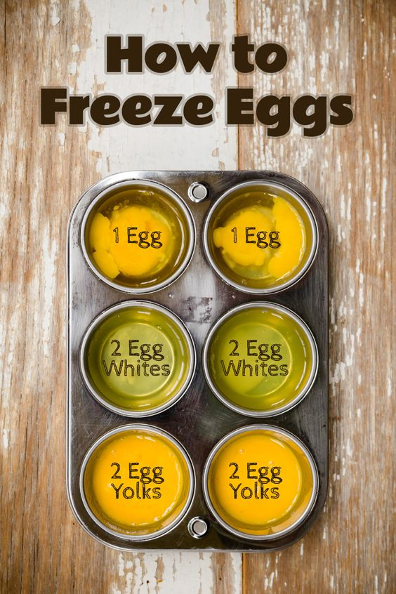 How to Freeze Eggs - from Cupcake Project