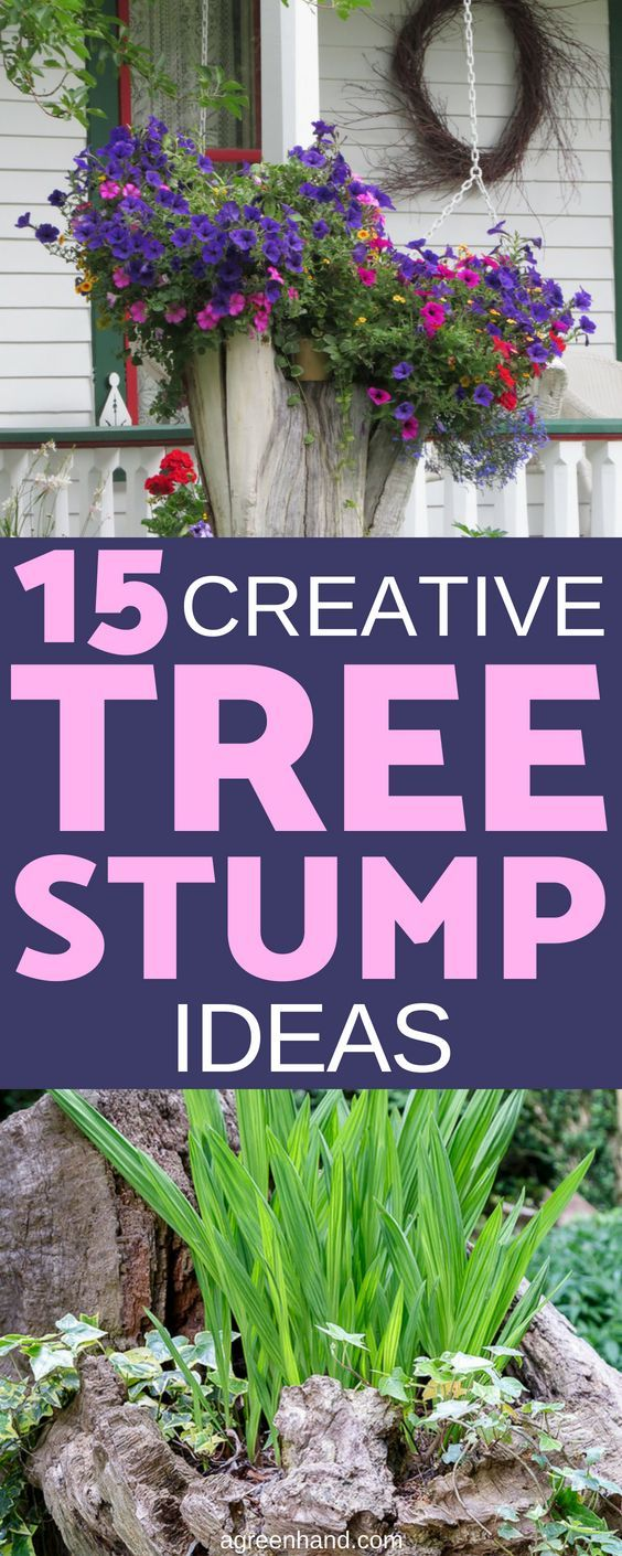 15 Creative Tree Stump Ideas To Style Up Your Garden Tree Stump