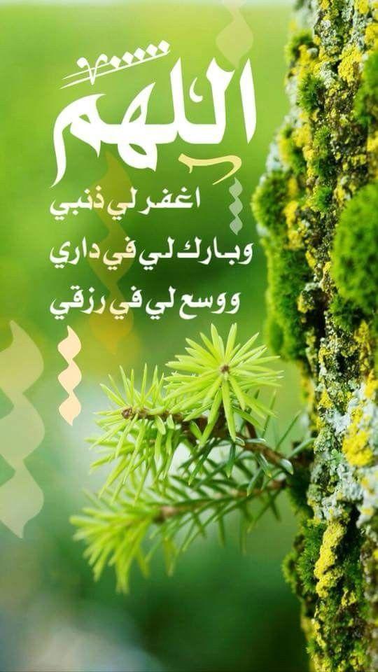 Pin By Masra Al Anbyaa On اللهم اغفر لي ذنبي وبارك لي في داري ووسع لي في رزقي Herbs Projects To Try Parsley