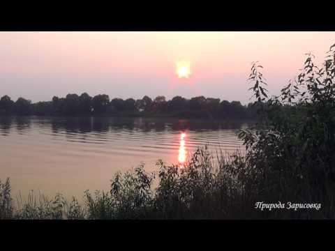 Закат. Река. Звуки природы. Пение птиц. Солнце садиться. Красивая музыка...