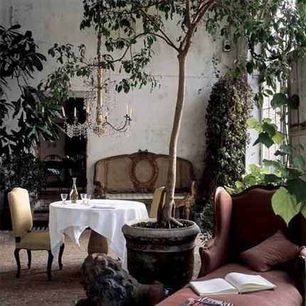 books, chaise, chandelier, cushion, dining, greenery