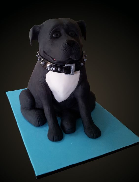 Dog Cake Decorations Nz : 3D Staffy cake. Even the collar is edible! FInd me at www ...