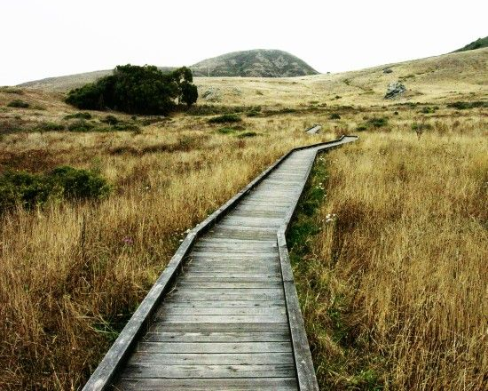 Landscape Photography The Journey awaits gray ochre by honeytree, $30.00