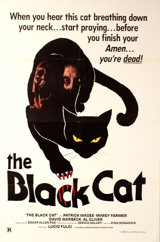 Pin By Brent Holifield On Movie Posters Cat Movie Black Cat Black Cat Art