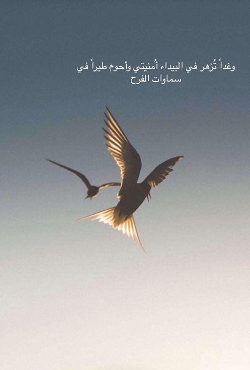 وغدا تزهر في البيداء أمنيتي وأحوم طيرا في سموات الفرح Beautiful Arabic Words Arabic Quotes Proverbs Quotes