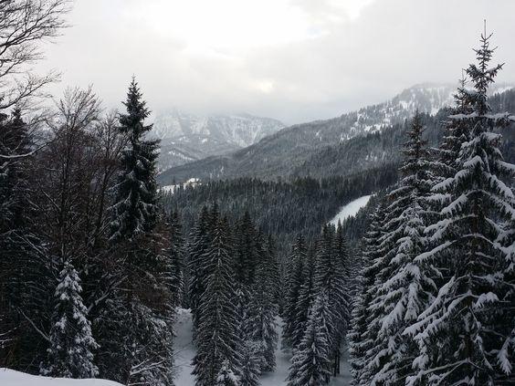 So langsam lichtet sich der #Nebel und legt Stück für Stück mehr von der herrlichen #Winter Bergwelt der #Alpen in #Bayern frei.