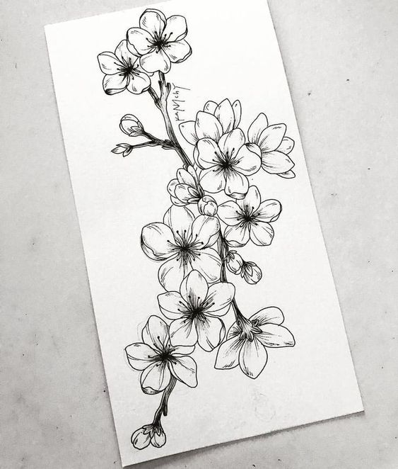 Learn To Draw A Realistic Rose Cherryblossom Draw Learn Realistic Rose Flowertattoos Diy Tattoo Images Beautiful Flower Drawings Realistic Flower Drawing Flower Drawing