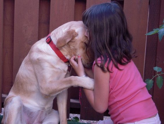 A dog's love knows no bounds.