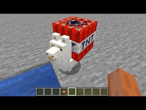 Most Cursed Minecraft Video Part 3 By Scooby Craft Youtube Minecraft Videos Minecraft All Video Games