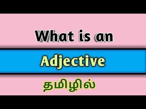 Adjective Adjective And Its Types In Tamil Youtube Adjectives Plurals Type
