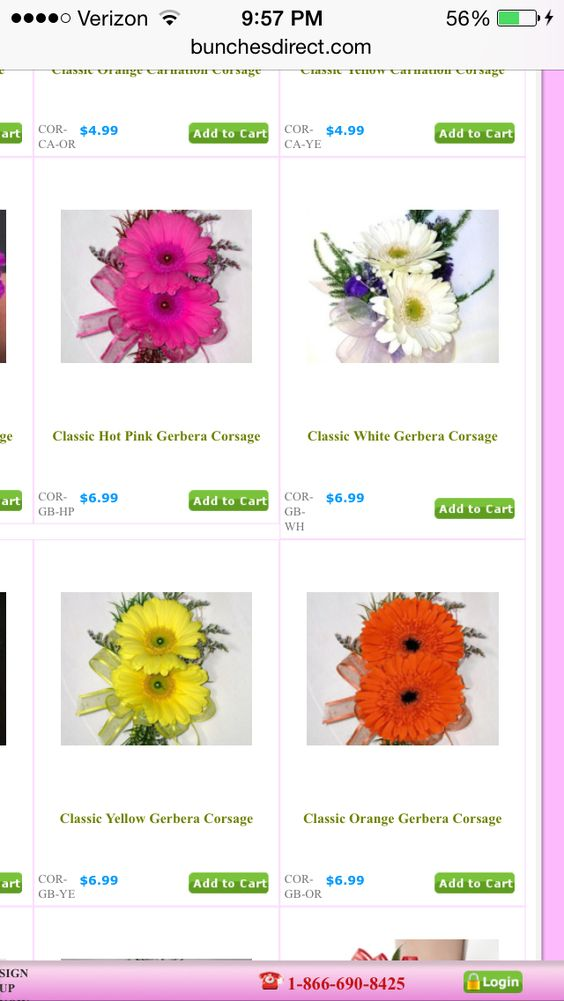 Various single color daisy corsages.