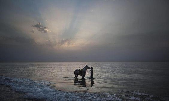 Un uomo lava il suo cavallo nel mare