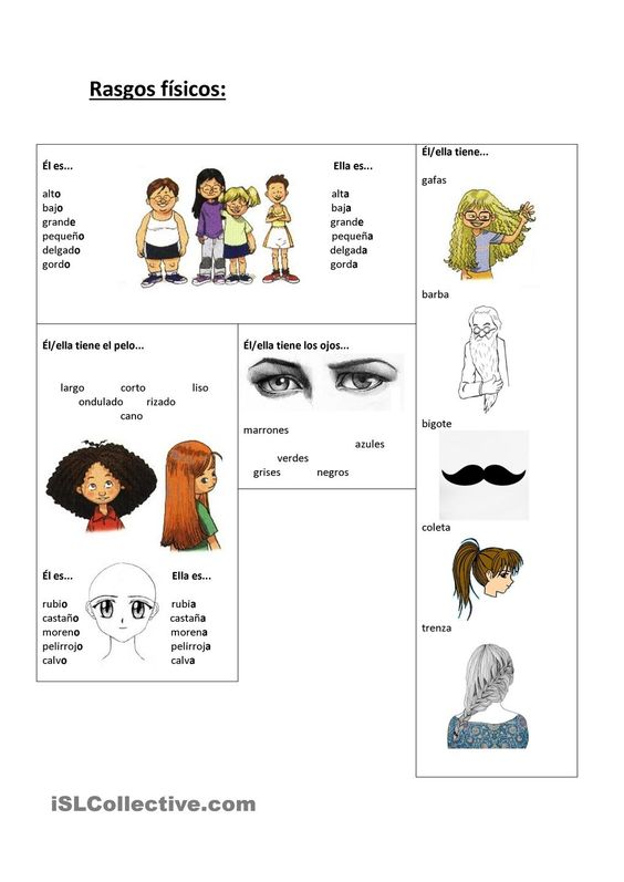 vocab sheet to learn phrases for physical descriptions. Black Bedroom Furniture Sets. Home Design Ideas
