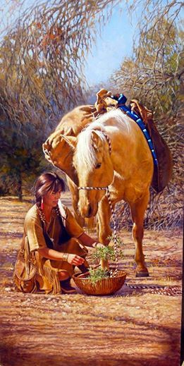 "Native Americans Indians ""Medicines Of Good Spirit"" ~ by Vicki Catapano"