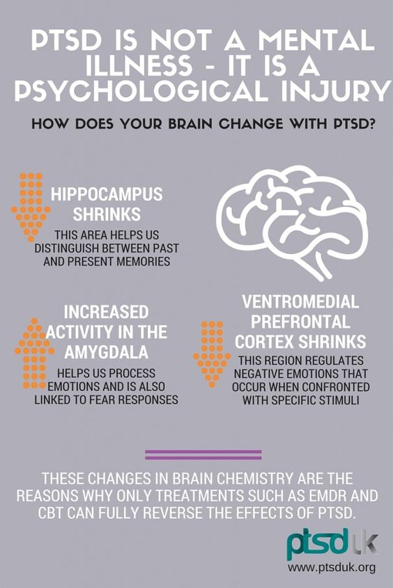 In Post Traumatic Stress Disorder (PTSD), there are significant physical changes within the brain as a result of trauma.