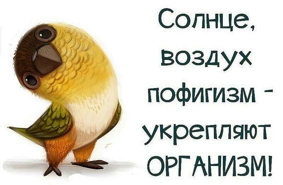 https://s-media-cache-ak0.pinimg.com/564x/67/36/99/6736995a7b201ad249516cf9db5a952d.jpg