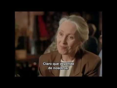 Peliculas en espanol subtituladas youtube Película Español.