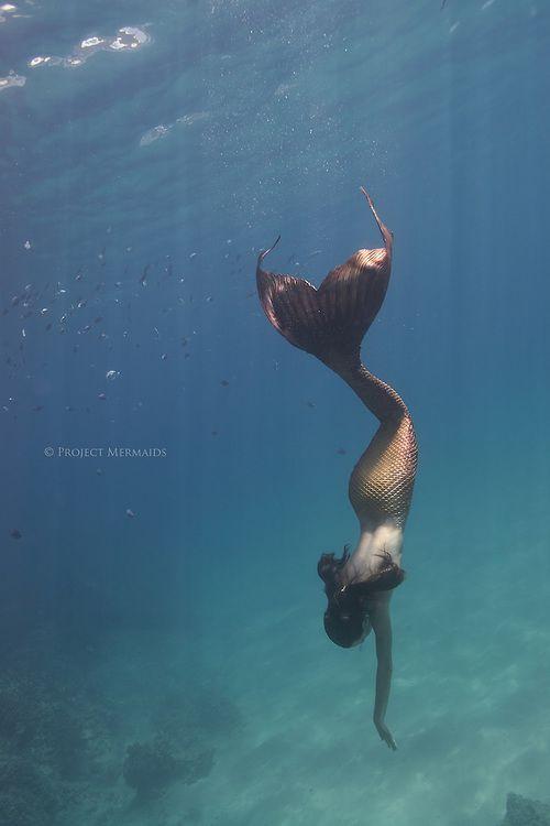 Project Mermaids: