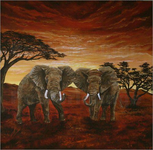 Poster Elefanten in freier Wildbahn