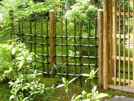 Bamboe omheining hek and bamboe on pinterest - Bamboe hek ...
