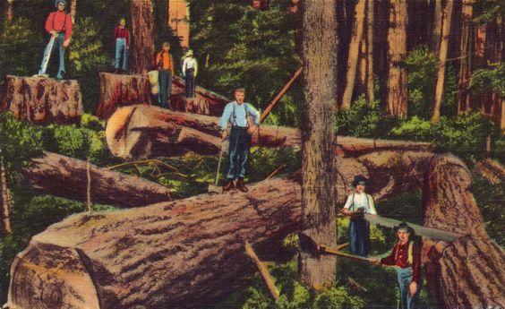woodsman tavern portland