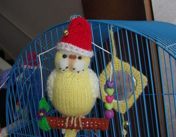 """Budgerigar  Knitted  Budgie """"Bonnie"""" Parakeet  """" """"  needle felted  Christmas hat"""