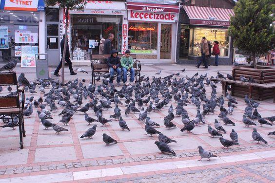 Saraçlar Avenue, Edirne // Saraçlar Caddesi, Edirne