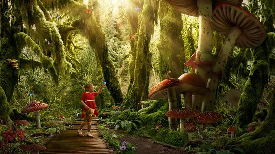 Dreams - In the Enchanted Forest on Behance