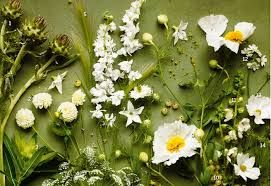 Resultado de imagen para learn how to flower bouquet of flowers