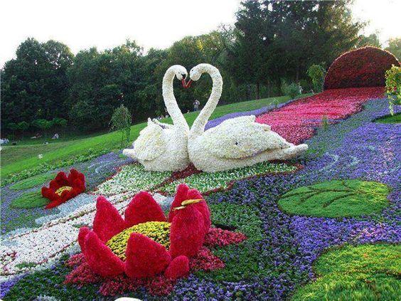 白鳥の形の綺麗で美しい花畑