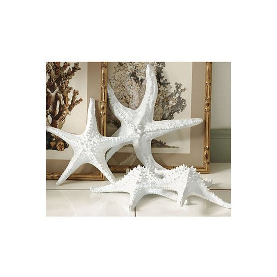 More Home Furnishings Starfish Design Homes Cgi Home Polyvore Design