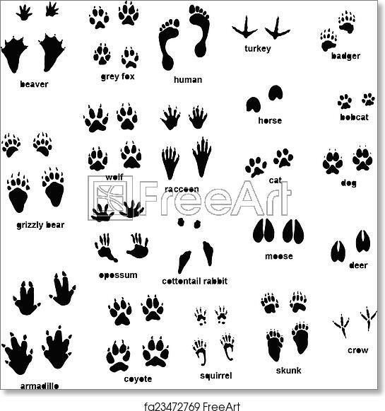 Free Art Print Of Animal Tracks In 2021 Animal Tracks Animal Footprints Vet Tech Tattoo