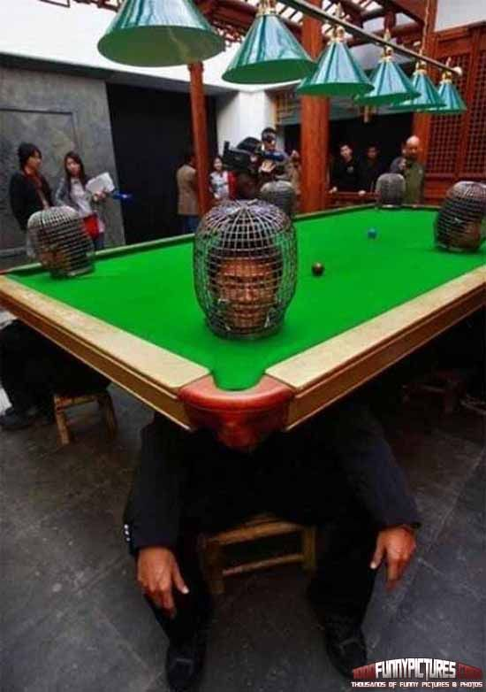 human pool table | pool tables | pinterest | pool table