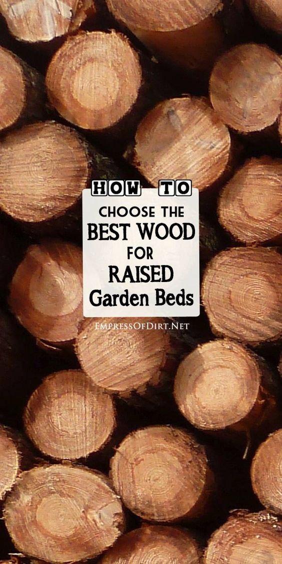 Best Wood to use for Raised Garden Beds Gardens Raised beds and