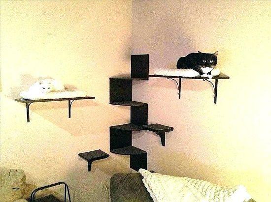 Easy Diy Cat Wall Shelves In 2020 Cat Wall Shelves Cat Shelves