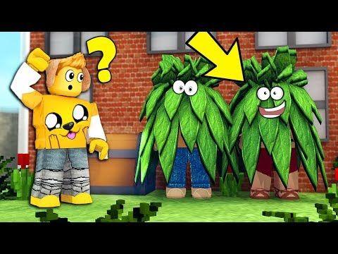 Los Compas En Roblox Me Escondo Dentro De Un Arbusto Los Compas En El Mejor Escondite De Roblox Youtube En 2020 Roblox Escondites Dibujos