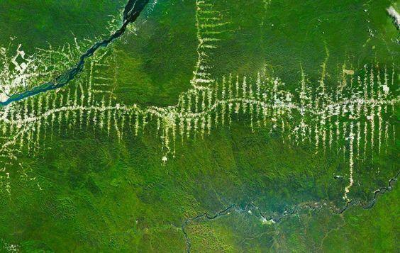 Amazônia - Brasil. http://www.overv.eu/