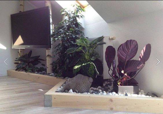 Coole Idee fürs Wohnzimmer
