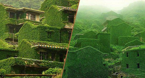 Un village chinois est englouti par la nature, l'île de Goqui (枸杞岛).