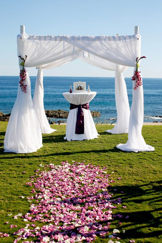 Cabo San Lucas Wedding  -  Beautiful wedding arch by the sea