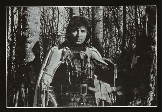 King Arthur in the woods of Albion ...